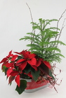 Happy Holidays from Flowers by Ray and Sharon in Muskegon, MI