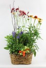 Perennial Garden Trio from Flowers by Ray and Sharon in Muskegon, MI