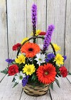 Pop of Color Basket Arrangement from Flowers by Ray and Sharon in Muskegon, MI