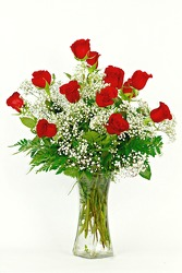 Dozen Roses with Baby's Breath Vased from Flowers by Ray and Sharon in Muskegon, MI