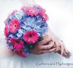 Gerbera and Hydrangea Wedding Bouquet from Flowers by Ray and Sharon in Muskegon, MI